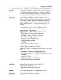 customer service objective statement for resume senior resumes