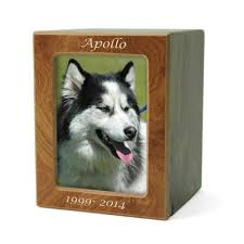 cremation urns for pets urns for pet ashes medium sized urns oneworld memorials