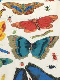 Vintage Drapery Fabric Entymology Vintage Illustration Butterfly Moth Insect Beetle Hand