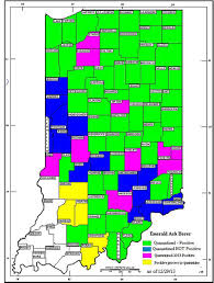 emerald ash borer map purdue educator eab can survive harsh winter in most places