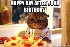 Day After Birthday Meme - happy day after your birthday birthday cat meme generator