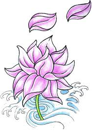 lotus flower tattoos high quality photos and flash designs of