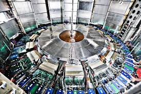 www large large hadron collider weasel shuts down world s largest particle