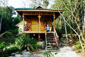 snap out of it live freemad monkey hostel review koh rong samloem