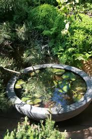 Patio Pond by 7 Best Mini Vijver Images On Pinterest Garden Ideas Backyard