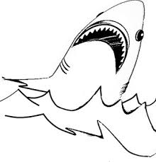 shark coloring pages keys shark shark craft