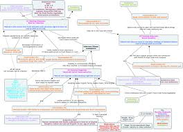 Endocrine System Concept Map Adpie Concept Map Image Gallery Hcpr