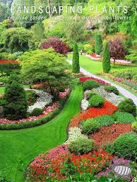 landscaping plants ornamental gardens creative design eco flowers