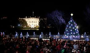 christmas tree lighting near me the obama family starts new tradition at national tree lighting