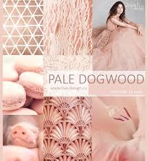 модный цвет pantone 2017 13 1404 pale dogwood бледный кизил