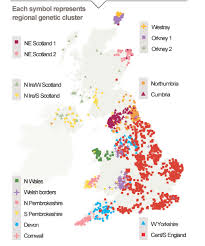 genetic map discovering dna a genetic map of the uk