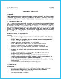 Project Control Officer Resume Non Fiction Travel Brochure Book Report Social Networking Sites