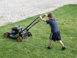 the best push mower reviews for 2017