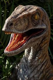 Reptilian Meme - reptilian humanoids br homo subterreptus br case files