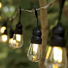 low voltage string lights clear led filament string lights edison 6 220 rub liked on