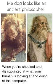 Shocked Computer Meme - me dog looks like an ancient philosopher when you re shocked and