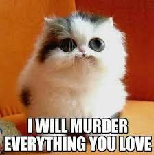 Happy New Year Cat Meme - 15 funniest animal pictures of happy new year day funny animal