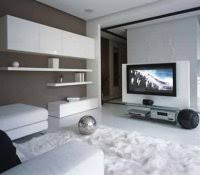 black and white living room with accent color interior decoration