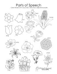 plant cell coloring page parts educational pages plant cell
