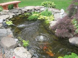 delightful small koi pond amazing backyard fish pond ideas outdoor
