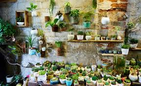 flowers store flower shop stock photo image of sale plants interior 57323162