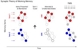 the frankenstein effect u0027 of working memory researchers examine