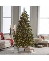 don t miss these deals on sterling tree company trees