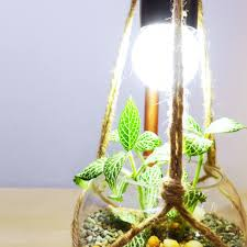 hanging planter copper lamp workshop appointment basis