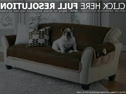 Leather Sofa And Dogs Leather Covers For Pets Leather Covers For Pets