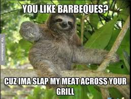 Funny Sexual Memes Pictures - you like barbeques meme