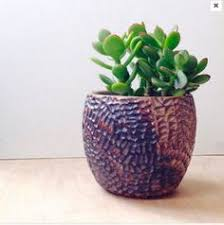 Ceramic Succulent Planter by Ceramic Succulent Planter With Carved Triangle By Carvedbylisa