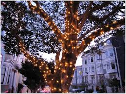 outdoor tree lights large home design ideas