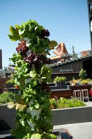 san francisco giants and bon appétit open garden at at u0026t park