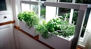 indoor herb garden wall indoor herb garden herb kitchen hanging garden rods container