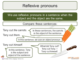 how to teach possessive reflexive and reciprocal pronouns off2class