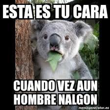 Memes De Nalgones - hombre nalgon memes memes pics 2018