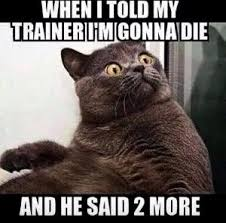 Trainer Meme - when i told my trainer i m gonna die and he said 2 more