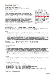 executive resume template marketing executive cv marketing executive resume resume format