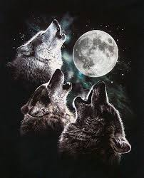 wolves always howl at the moon tv tropes
