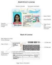 tennessee drivers license template 28 images tennessee drivers