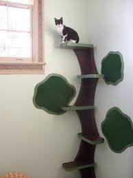 creative cat jungle features chic shelf paper contact paper chic