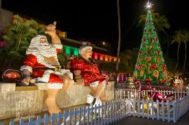 5 great places where you can see pretty christmas tree light