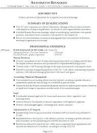 insurance agent resume sample format of insurance agent resume