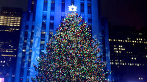 100 fiber optic christmas trees amazon martha stewart