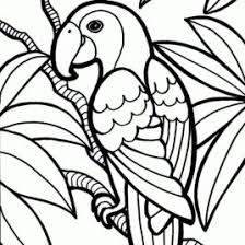 colouring sheets coloring pages kids colouring sheets