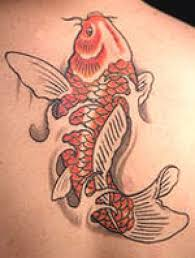 meanings of koi fish tattoos cool animal tattoos