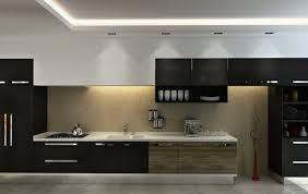 cabinet inspirational laminated plywood kitchen cabinets