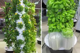 inside peek at o u0027hare airport u0027s vertical farm urban gardens