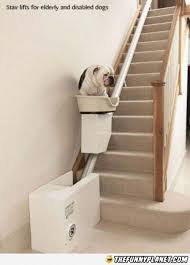 10 best stairlifts images on pinterest stairs basements and boxes