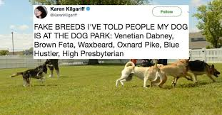 These Are The Funniest Tweets - these are the funniest tweets of all time this week 21 photos